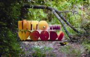 images-100x100-centerstage-Into_The_Woods_WEB-185x118